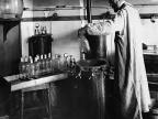 Louis Pasteur podczas pracy w labolatorium