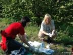 Prof. dr hab. Barbara Tokarska-Guzik (z prawej) podczas zbierania materiału w terenie w ramach programu monitorowania wędrówek inwazyjnych gatunków roślin z biegiem rzek