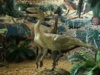 Rekonstrukcja paleontologiczna znajdująca się na WNoZ UŚ