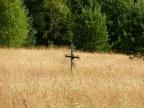 Bieliczna – nieistniejąca wioska łemkowska w Beskidzie Niskim u stóp Lackowej (997 m n.p.m.) (Foto: Olga Madejczyk)