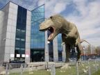Replika tyranozaura przed Wydziałem Nauk o Ziemi Uniwersytetu Śląskiego