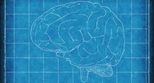 Szkic mózgu z tablicą szkolną w tle