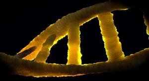 Helisa DNA. Fot. Pixbay, domena publiczna