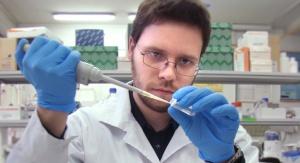 Mgr Marek Marzec przygotowuje próbki do analizy obecności zmutowanego allelu. Fot. Aleksandra Muszyńska
