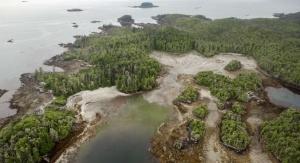 Triquet Island. Foto: Grant Callegari/Hakai Institute
