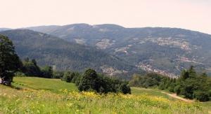 Krajobraz Beskidu Śląskiego (Foto: Zbigniew Wilczek)