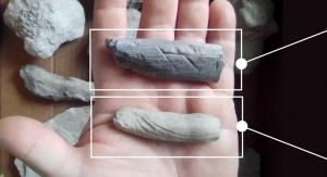 Okazy ichnologiczne. Ciemniejszy okaz to fragment kości ze śladami zębów drapieżnego archozaura (prawdopodobnie z grupy Theropoda). Jaśniejszy okaz to fragment nory stawonoga z zachowanymi śladami odnóży w postaci bruzd | fot. Grzegorz Sadlok