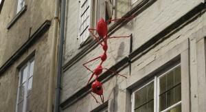 To tylko dekoracja jednego bremeńskich domów. Tak duże mrówki nie istnieją, w swoich domach możesz jednak natrafić na jej dużo mniejszych pobratymców (Foto: pixabay.com)