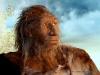Model neandertalczyka według projektu Marty Szubert, znajdujący się w zbiorach Muzeum Wydziału Nauk o Ziemi UŚ