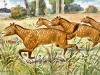 Mesohippus (z gr. półkoń) to przedstawiciel rodziny koniowatych, który żył ok. 34–32 milionów, czyli na przełomie eocenu i oligocenu, a wszystkie kończyny miał zakończone trzema palcami. Obraz Heinricha Hardera z 1920 roku, pl.wikipedia.org.