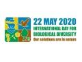 Międzynarodowy Dzień Różnorodności Biologicznej 2020 - logo