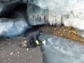 Dr Krystyna Kozioł z Polskiej Stacji Polarnej Hornsund (absolwentka UŚ) pobiera próby wody z rzeki subglacjalnej Lodowca Hansa dla przeprowadzenia badań składu chemicznego oraz zawiesiny mineralnej. Fot. Jacek Jania
