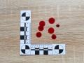 Podjęcie próby odpowiedzi na pytanie o czas powstania śladów krwawych jest możliwe dzięki procesom starzeniowym   fot. Alicja Menżyk