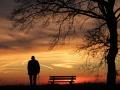 Ciemna sylwetka człowieka opierającego się na lasce, patrzącego na zachód słońca, stojącego tłem do zdjęcia, obok ławka i drzewo, którego gałęzie wiszą nad tym człowiekiem.