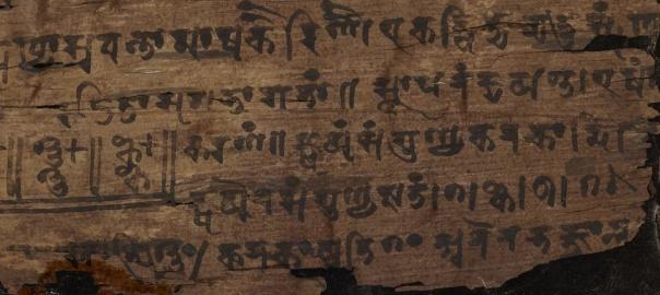 Manuskrypt z Bakhshali. Copyright: Bodleian LIbraries, Oxford University