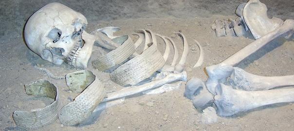 Szkielet kobiety w Muzeum Archeologicznym w Biskupinie. Fot. FxJ, domena publiczna